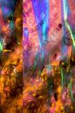 Gemanipuleerde, abstracte micrograaf van bracteeën van een madeliefje stock afbeeldingen