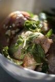Gemarineerd Vlees met kruiden Royalty-vrije Stock Foto's