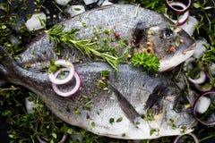 Gemarineerde die brasemoverzees op witte achtergrond wordt geïsoleerd stock foto's