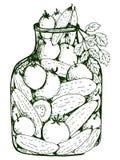 Gemarineerde groenten vector illustratie