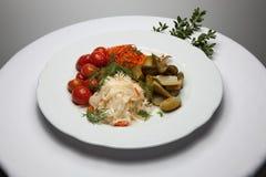 Gemarineerde groenten Stock Afbeeldingen