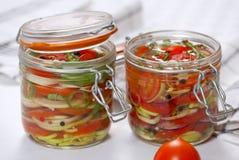 Gemarineerde groenten stock foto's