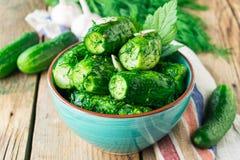 Gemarineerde komkommers met knoflook en dille in ceramische waren stock foto's
