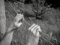 Gemartelde handen die prikkeldraad begrijpen Royalty-vrije Stock Foto's