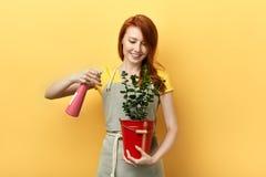 Gember gelukkig meisje die de groene bladeren van bloem met waternevel schoonmaken royalty-vrije stock fotografie