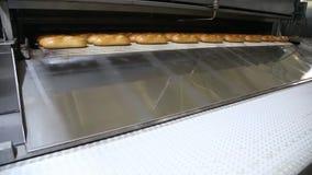 Gemechaniseerde bakkerij Brood op een transportband stock videobeelden