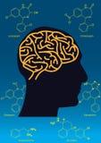 Gemeenschappelijk hersenenmedicijn Stock Foto