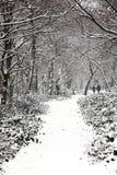 Gemeenschappelijk sneeuwlandschap van Wandsworth Royalty-vrije Stock Foto's