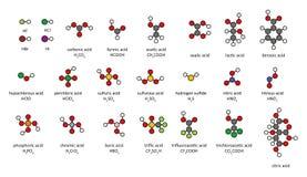 Gemeenschappelijke zuren, 2D chemische structuren. Royalty-vrije Stock Afbeeldingen