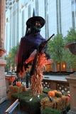 Gemeine Hexe auf Erie-Straße Stockfotografie