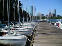 Gemeinschaftssegelboote Stockfoto