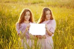 Gemelli che tengono manifesto in bianco bianco all'aperto Fotografia Stock Libera da Diritti