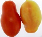Gemelli di Tomatoe Fotografia Stock