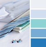 Gemelli e camicia campioni della tavolozza di colore tonalità pastelli immagini stock libere da diritti