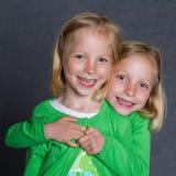 Gemelos Imagen de archivo libre de regalías