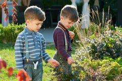 Gemelos en el jardín Imagen de archivo libre de regalías