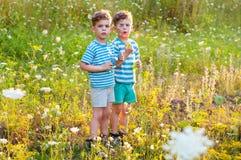 Gemelos en el prado de la flor Imágenes de archivo libres de regalías