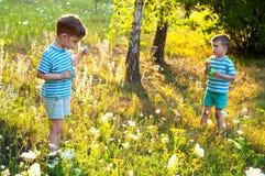 Gemelos en el prado de la flor Foto de archivo libre de regalías