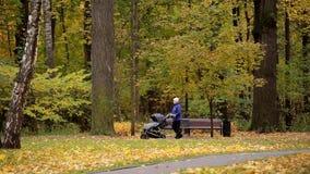 Gemelos en un cochecito de niño La mamá lleva La mujer con un cochecito hermana en el parque del otoño almacen de metraje de vídeo