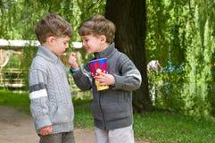 Gemelos idénticos con palomitas en el parque Imagen de archivo libre de regalías