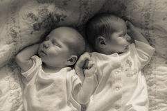 Gemelos recién nacidos Imagen de archivo