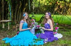 Gemelos sonrientes felices hermosos de las hermanas Imagen de archivo libre de regalías