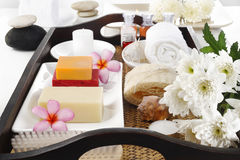gemen för kaviaren för tillbehörbadhuvuddelen mjölkar handdukar för tvålbrunnsortstenar Royaltyfria Bilder