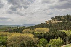 gemengd bos op de helling onder de donkere wolken Stock Foto's
