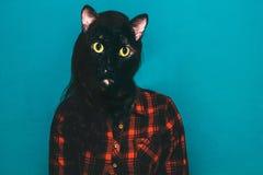 gemengd media collagemeisje met kattenhoofd stock afbeelding