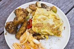 Gemengd Thais voedsel met rijst Stock Afbeeldingen