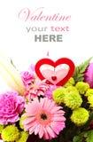 Gemengd Valentine Flower Stock Afbeelding