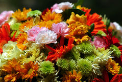 Gemengde bloemen Stock Afbeeldingen