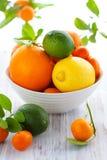 Gemengde citrusvruchten stock foto's