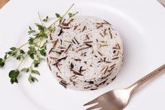 Gemengde gekookte rijst met thyme op witte plaat Stock Afbeelding