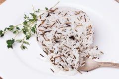 Gemengde gekookte rijst met thyme op witte plaat Royalty-vrije Stock Fotografie