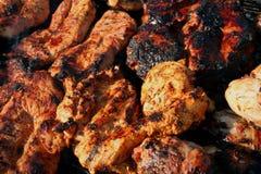 Gemengde grill 5 Royalty-vrije Stock Foto's