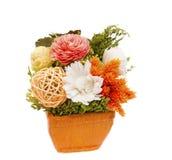 Gemengde kleurrijke droge bloem Royalty-vrije Stock Foto's