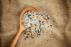 Gemengde multikorrel traditionele Thaise rijst, graan, zonnebloem, rogge, s stock fotografie