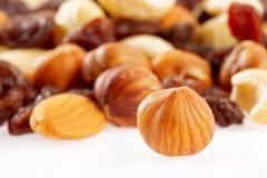 Gemengde noten en droge vruchten Royalty-vrije Stock Afbeelding
