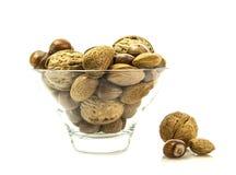 Gemengde noten in shells selectie van Brazilië, amandelen, okkernoten en haz royalty-vrije stock afbeeldingen