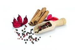 gemengde peper en pijpjes kaneel Royalty-vrije Stock Afbeelding