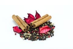 Gemengde peper en pijpjes kaneel Royalty-vrije Stock Foto