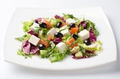 Gemengde plantaardige salade Royalty-vrije Stock Afbeeldingen
