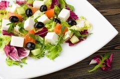 Gemengde plantaardige salade Stock Afbeelding