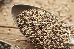gemengde quinoa op oude zilveren lepels stock foto's