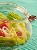Gemengde salade Royalty-vrije Stock Foto