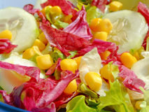 Gemengde salade 3 Royalty-vrije Stock Foto