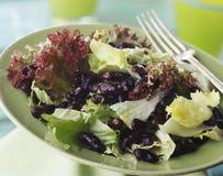 Gemengde salade Royalty-vrije Stock Afbeeldingen