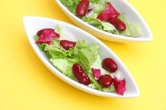 Gemengde salade met bonen Royalty-vrije Stock Afbeeldingen