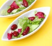 Gemengde salade met bonen Stock Foto